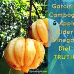 Truth About Garcinia Cambogia and Apple Cider Vinegar Diet!